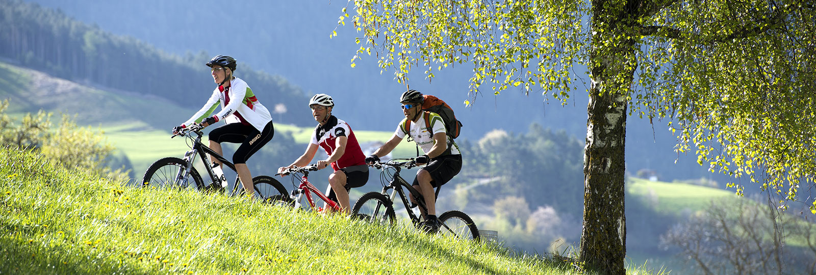 mountainbiken-seis
