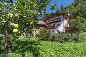 Ferienwohungen am Puntschiedhof mit Obst- und Gemüseanbau